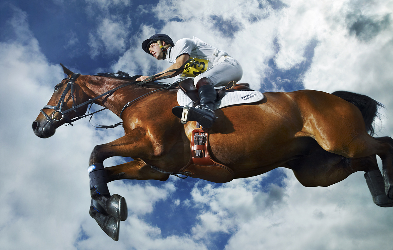 La aristocracia del caballo