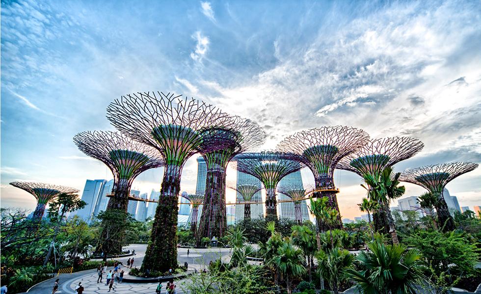 8 jardines verticales del mundo de una belleza natural únicaSubtítulo