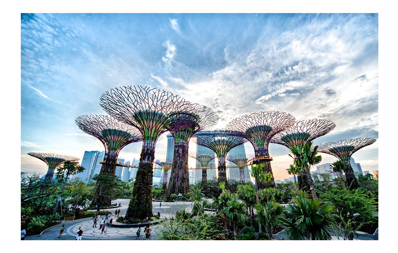 Los jardines de la bahía (Singapur)