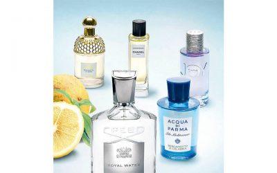 ¿Cuál es el ingrediente de los perfumes exclusivos?Subtítulo