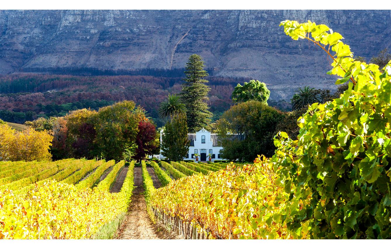 Alluvia Stellenbosch Wine Farm Stellenbosch, Sudáfrica