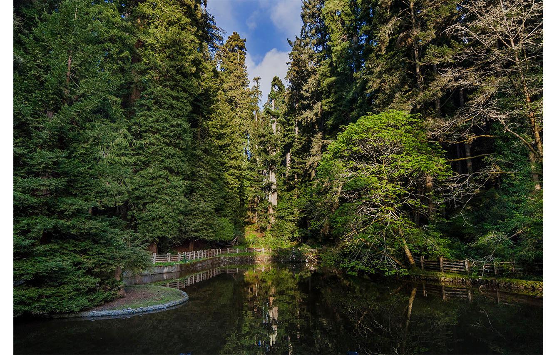 Sequoia Park Zoo en Eureka