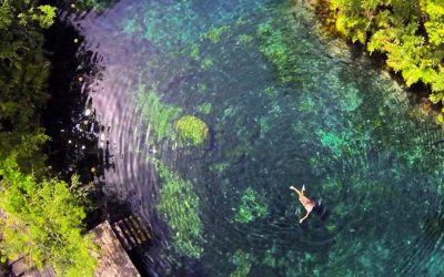 Descubre las maravillas de este cenote secretoSubtítulo