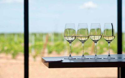 Desde casa, cata exclusiva de los vinos de D.O. RuedaSubtítulo