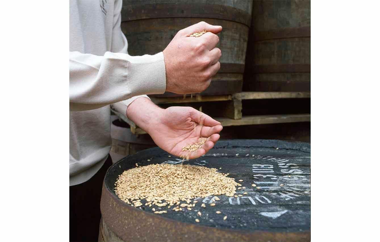 Irlanda produce 4 tipos de whiskey