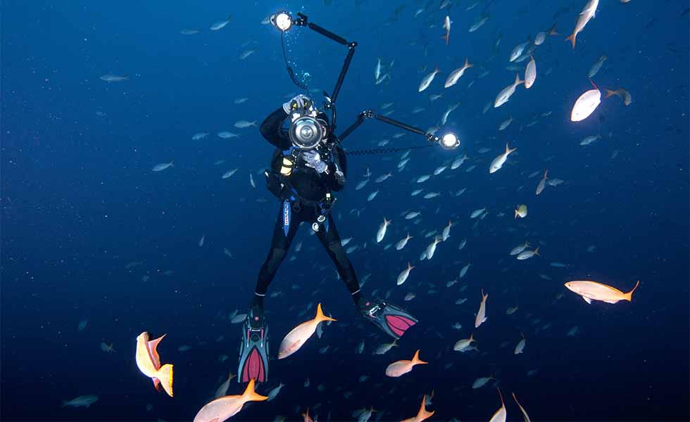 Las 9 imágenes más impresionantes de los océanosSubtítulo