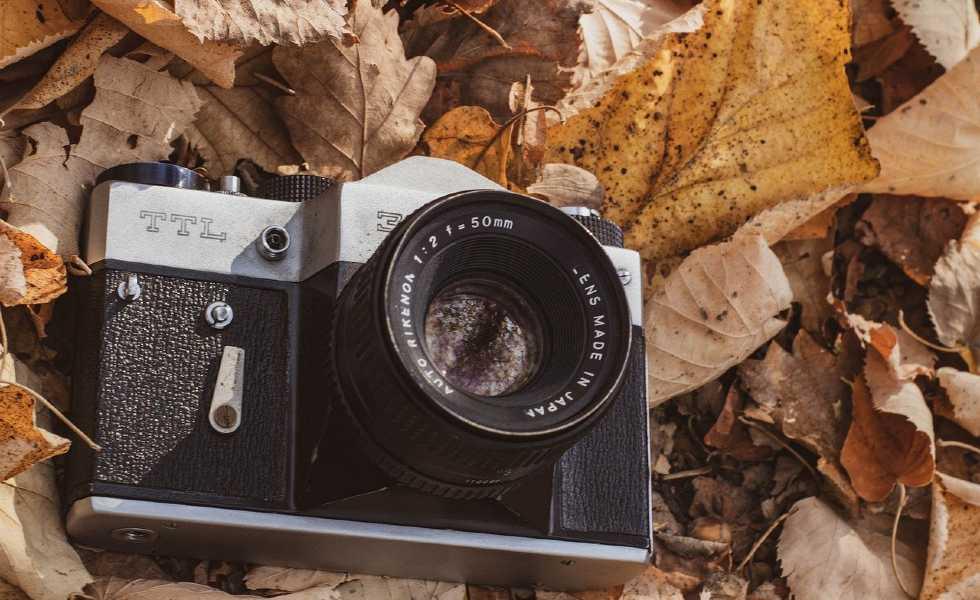 Las 8 mejores cámaras de fotografía en el mercadoSubtítulo