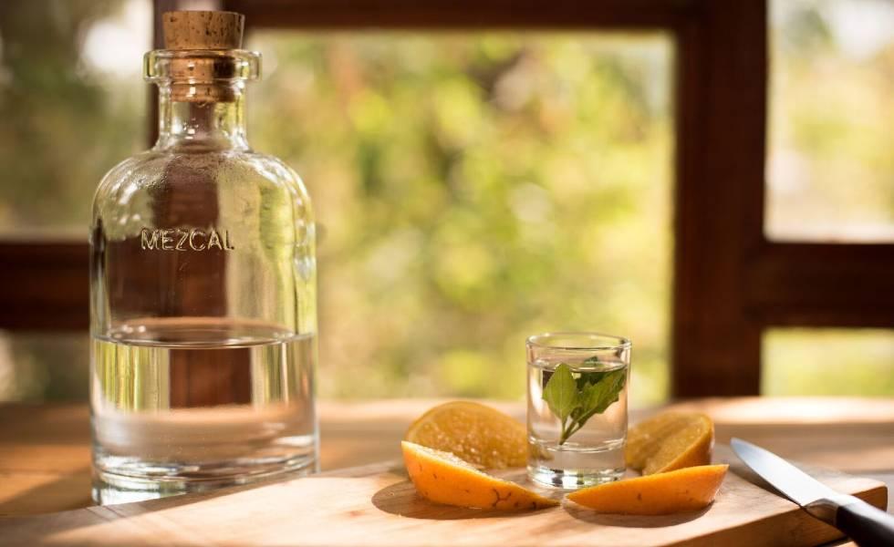 Prueba el destilado más perfecto del mundo en MéxicoSubtítulo