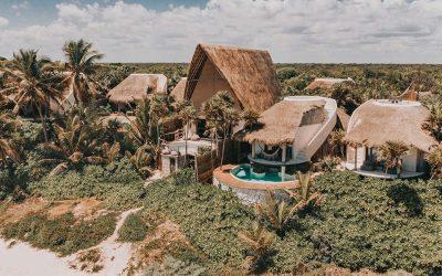 Descubre los viajes culinarios de Papaya Playa ProjectSubtítulo