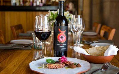 Descubre el recorrido de La Ruta del Vino en San Miguel de AllendeSubtítulo