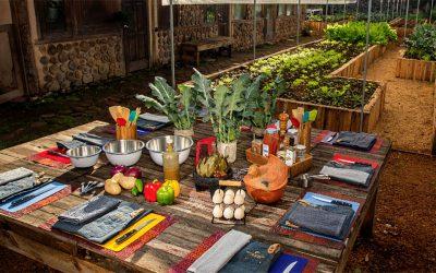 Gastronomía de lujo en el paraísoSubtítulo