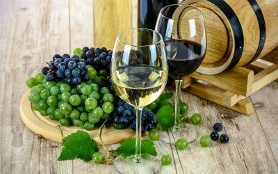 El Palacio de Hierro impulsa el Club Cava para amantes del buen vinoSubtítulo